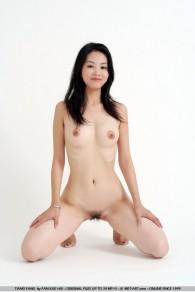 Met Art Tiang Fang